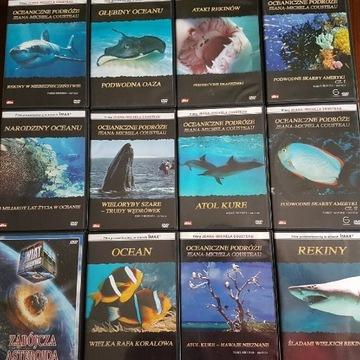 Oceaniczne Podróże