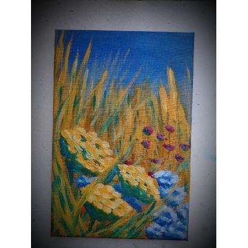 Obraz akryl wrotycz kwiaty łąka prezent