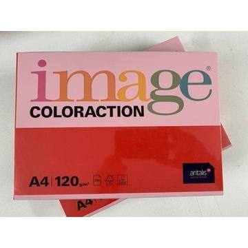 Papier IMAGE CHILE 120gr 2 ryzy / LIKIWDACJA FIRMY