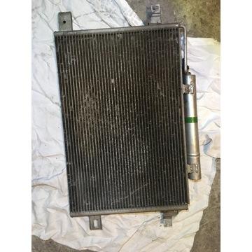Chłodnica klimatyzacji w169 cdi a1695000354