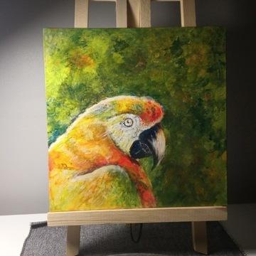 Obraz akrylowy - papuga 25x25cm
