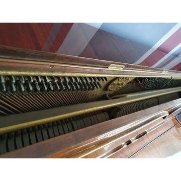 Pianino Balthur Calisia - stylowe