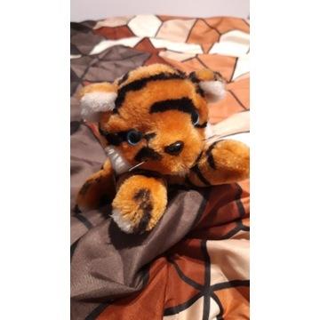 Tygrysek pluszowy.