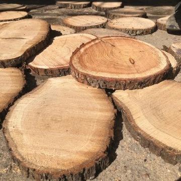 Plastry drewna krążki drewniane 35-40 cm DĄB G 5cm