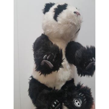 Maskotka-Miś PANDA-przytulanka-interakty.nie dział