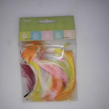 Kolorowe piórka do prac plastycznych