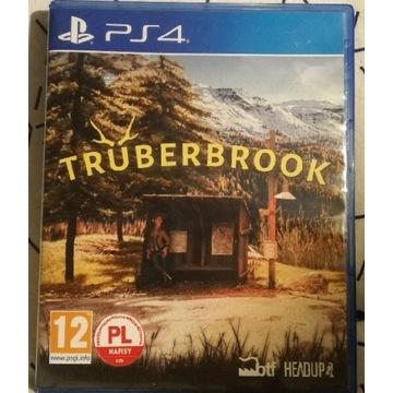 Wspaniała gra przygodowa na ps4 Truberbrook