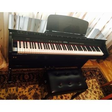Pianino Hemingway DP501 PB + stołek