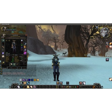 Paladin human alliance 80 lvl Icecrown Warmane