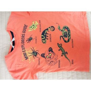 T-shirt, koszulka dla chłopca 110/116 H&M