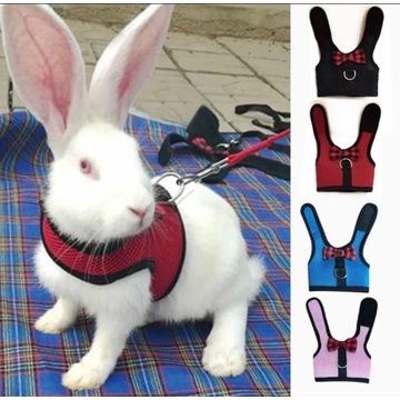 Czerwone szelki dla królika miniaturki S