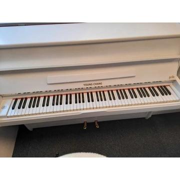 Pianino białe YOUNG CHANG transport gwarancja