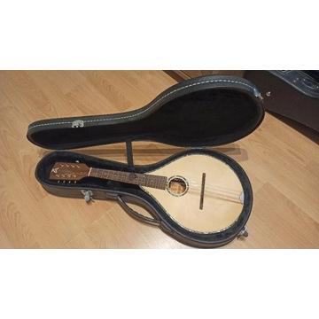Mandolina Ashbury Style S Celtic