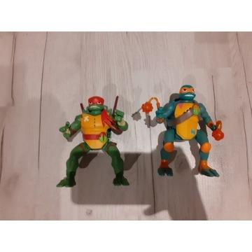 Żółwie  nijnia