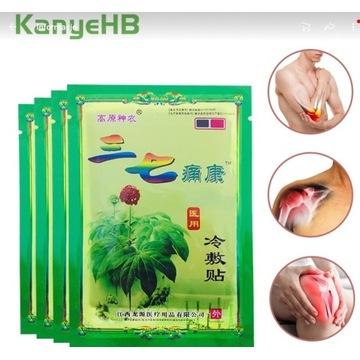 Plaster przeciwbòlowy chiński paproć krokosz seler
