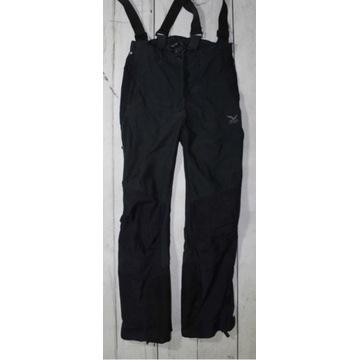 Spodnie techniczne Salewa