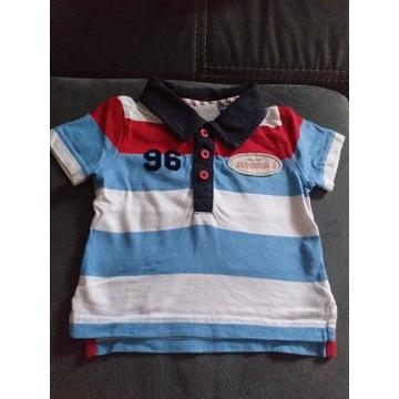 Koszulka polo, t-shirt na 3-6 miesięcy