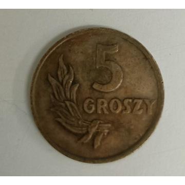 MONETA 5 GR. 1949 BRĄZ