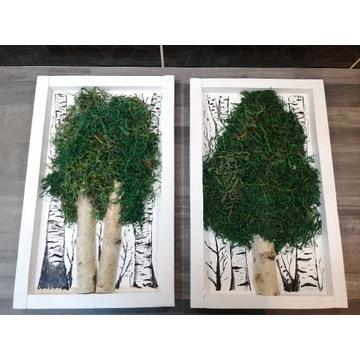 Obraz z mchu, obraz drzewa, dekoracja, rękodzielo