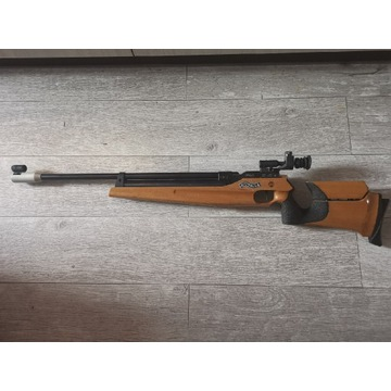 Walther lgm2 pca