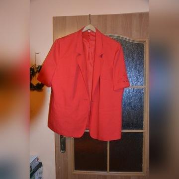 Garsonka spódnica i spodnie