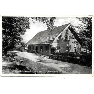 Pustki -Wyszki (Wustung).