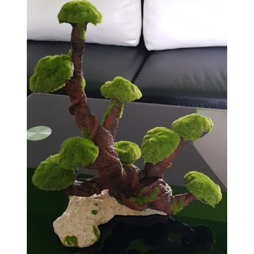 NOWE drzewko korzeń Bonsai akwarium krewetkarium