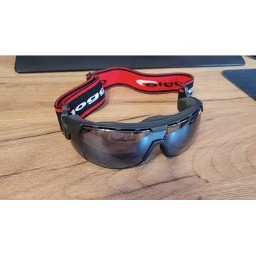 Gogle narciarskie Goggle