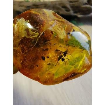 Bryłka bursztynu bałtyckiego piękna 23 gram