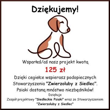 Cegiełka o wartości 125 zł