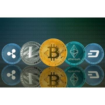 Krypto waluty - marketkryptowalut.pl - 4 domeny
