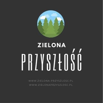 Domena www.zielona-przyszlosc.pl