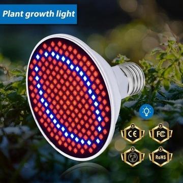 Żarówka GROW 300 LED do uprawy roślin