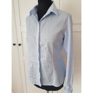 Niebieska koszula Lambert Wólczanka 42 na spinki