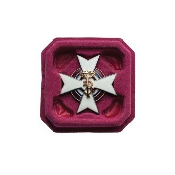 Odznaka 20 Pułku Ułanów