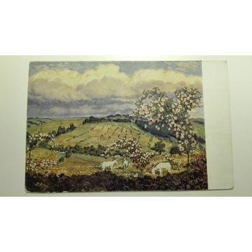 Kozy, wiosna, pola, pocztówka 1928, Czechosłowacja