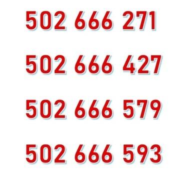 502 666 xxx 4x STARTER ORANGE ŁATWY ZŁOTY NUMER