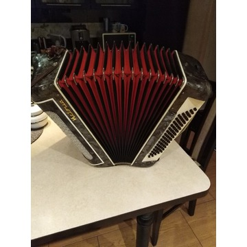 Akordeon Victoria 80