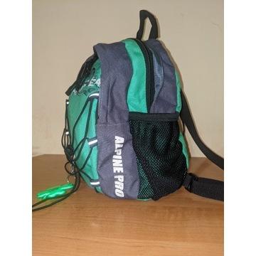 Plecak Alpine PRO