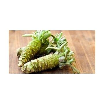 Wasabi-nasiona  (100 szt)