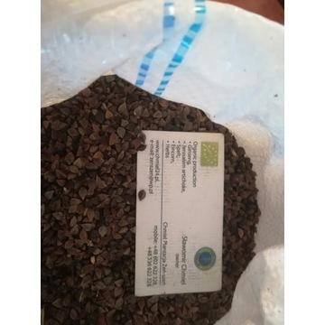 gryka ekologiczna na poplony siew 1 kg