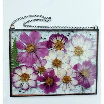 Witraż kwiatowy, dekor suszone kwiaty cosmos c