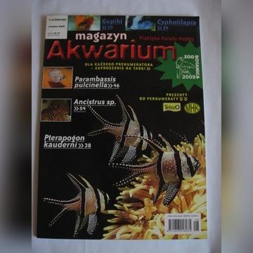 MAGAZYN AKWARIUM NR 8/2009