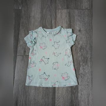 Koszulka bluzeczka t-shirt Pepco 86 kotki
