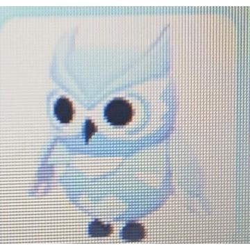 Snow  owl adopt me