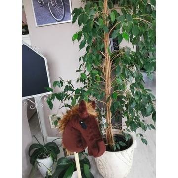 Koń Hobby Horse na kijki - Brownie