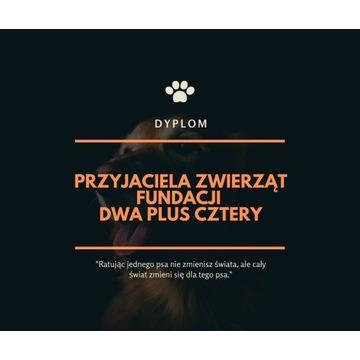 Dyplom przyjaciela zwierząt Fundacji DwaPlusCztery