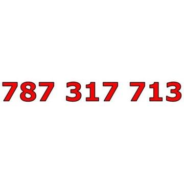 787 317 713 T-MOBILE ŁATWY ZŁOTY NUMER STARTER