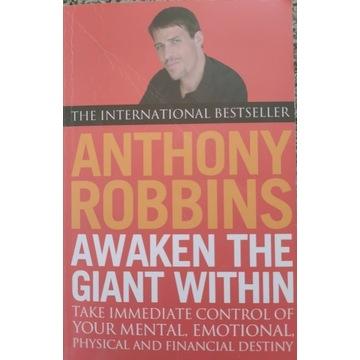 Tony Robbins Awaken The Giant within
