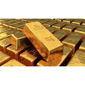 Whitemane Mograine WoW 5k GOLD Ally/Horde + BONUS